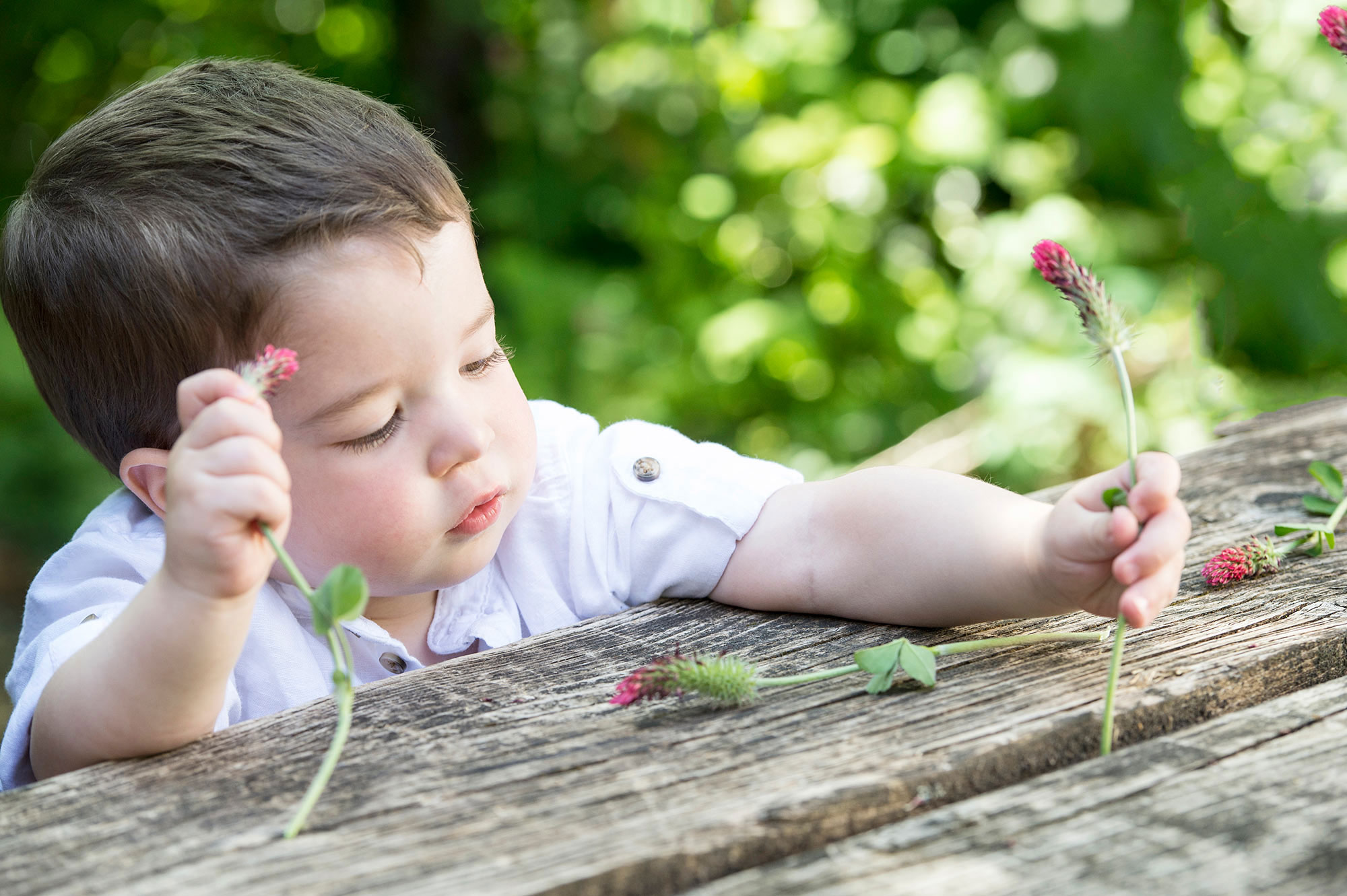 Boy being creative with field flowers