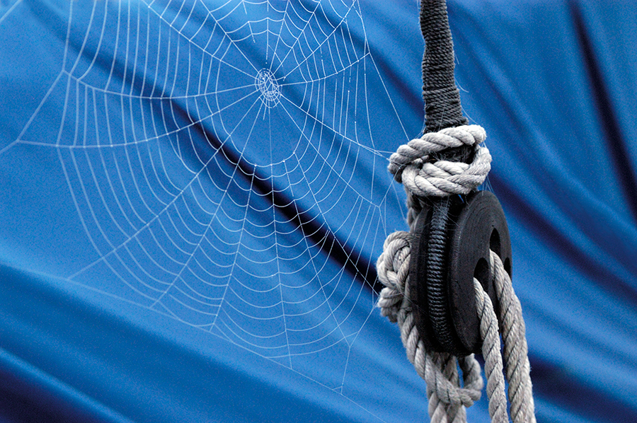 Spider web on a blue sail canvas