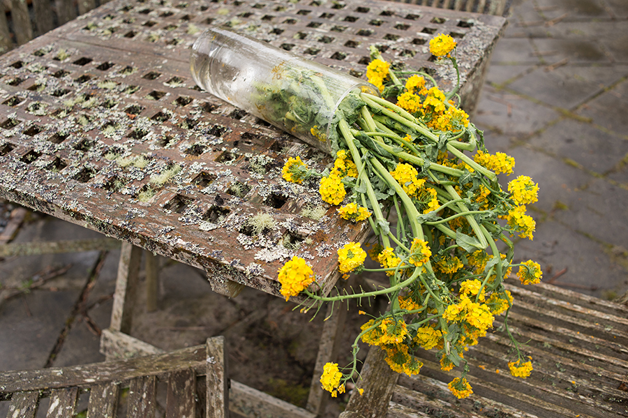 Toppled vase with flowers on a garden table